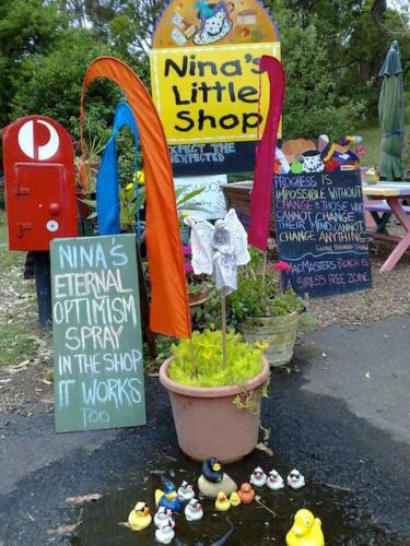 Nina and her Little Shop1