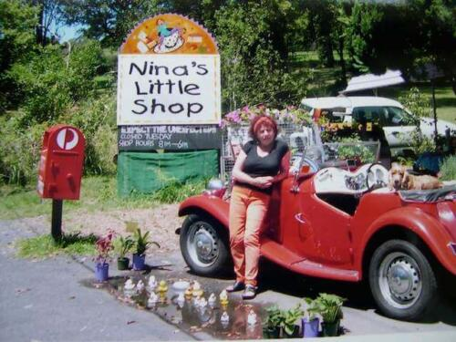 Nina and her Little Shop12